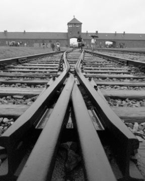 Taken from the train tracks leading into Auschwitz II (Birkenau)
